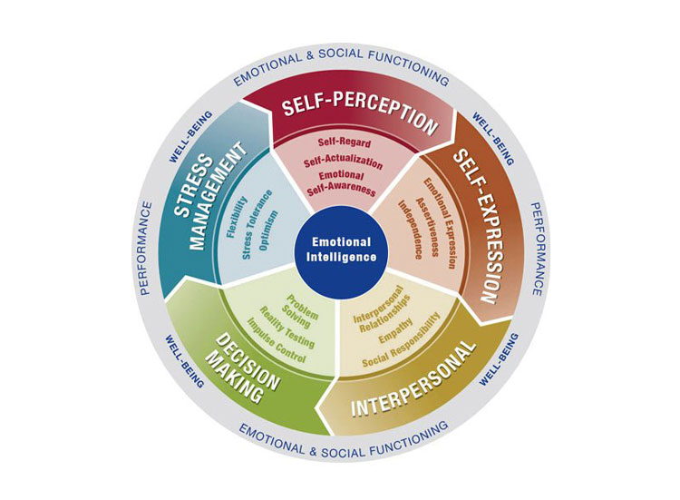 EQi 2.0 Emotional Intelligence Psychometric Assessment Tool
